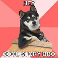 Hey_cool_story_bro